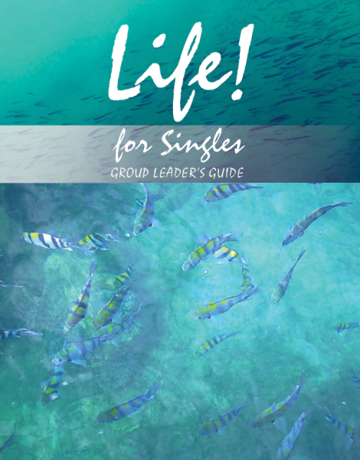 Life! for singles. Group Leader's guide to a Christian self discovery study looking at identity, character, friendships and relationships. The workbook has 9 units for use alone or as part of larger study group. Looking at how to do friendships and relationships well, how to be the best that you can be.